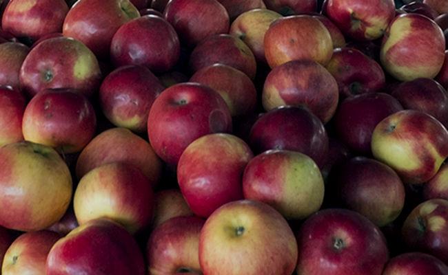 frutas para comer sin engordar