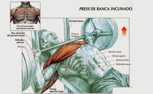 press inclinado